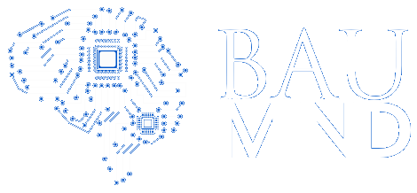 BAU INNOVATION AND CONSULTANCY INC.